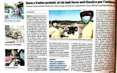 Marina di Vecchiano 2020, task force anti-Covid e per la tutela dell'ambiente